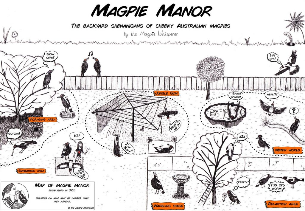 magpie-manor